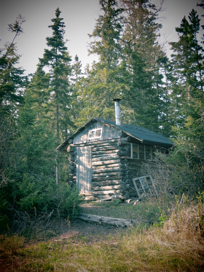 Swede Island Sauna. 2012 (photo Susan Lee)